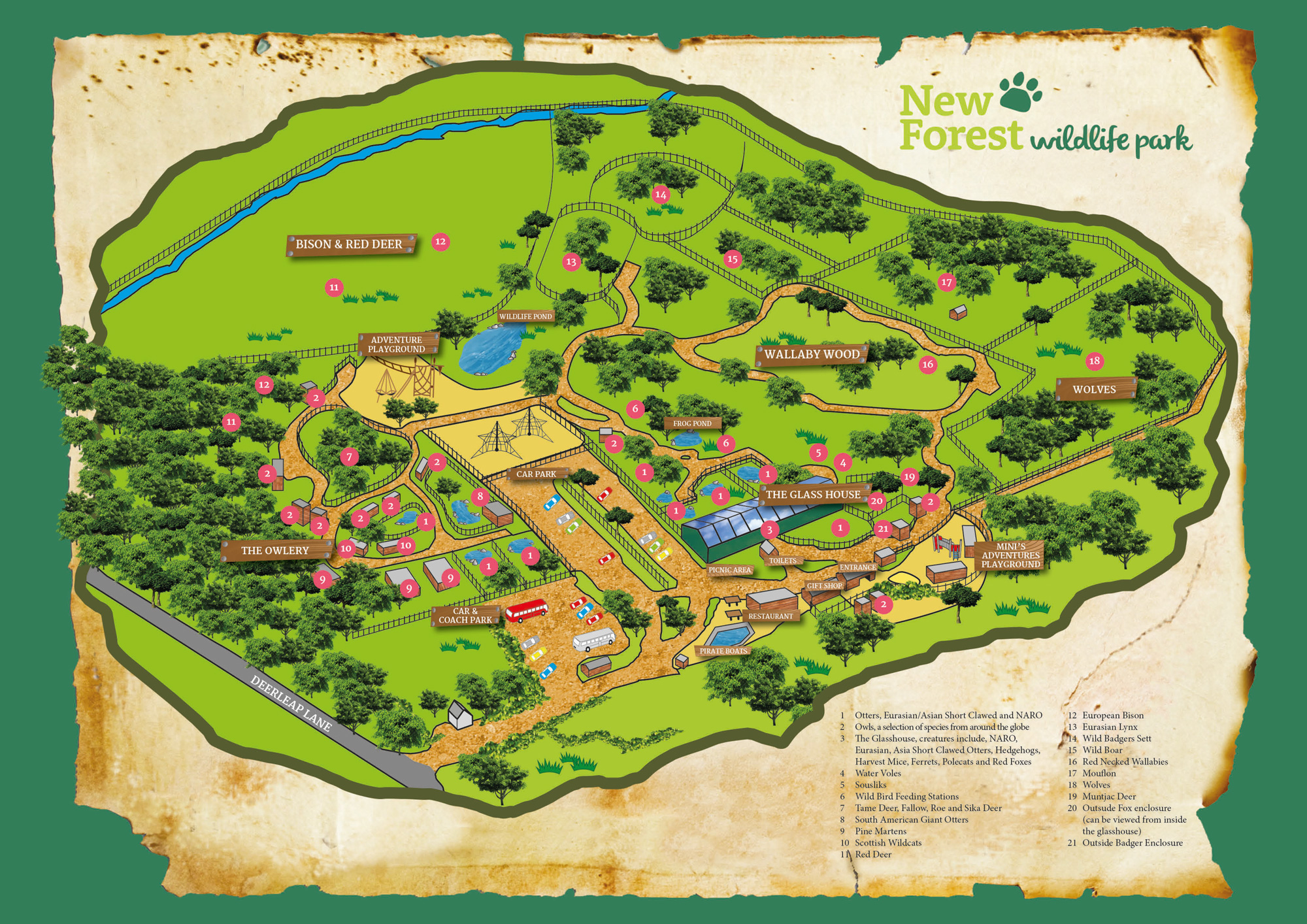 Map Of Uk Hampshire.The Park Map New Forest Wildlife Park