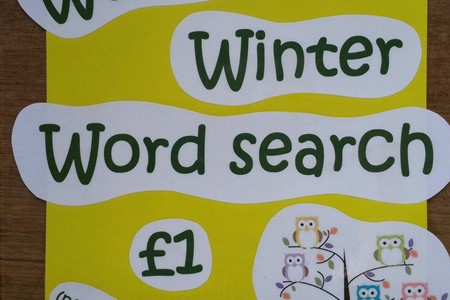 Half term Wonderful Winter Word Search
